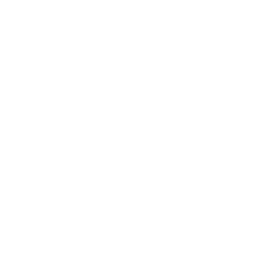 Sumthin Dumplin - Light - Logo
